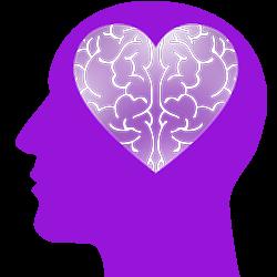 liefde brein hersenen