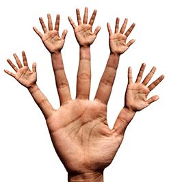 hand vijf gedachten