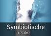 symbiotische relatie