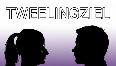 tweelingziel