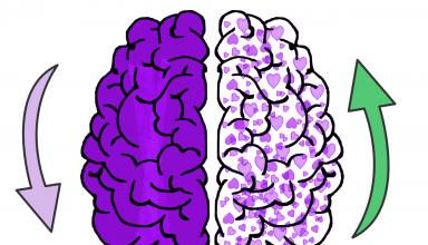 hersenen harten