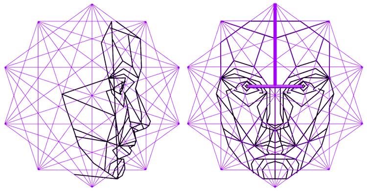 phi mask