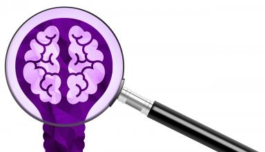 onderzoek brein